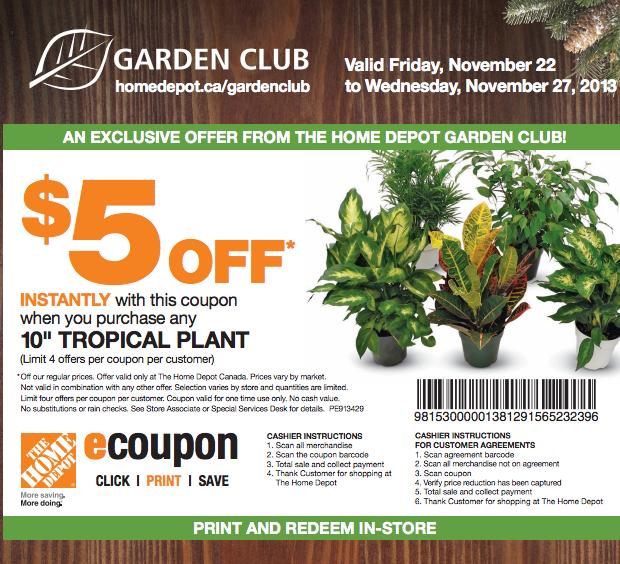 Coupon Home Depot De 5$ Sur Les Plantes Tropicales