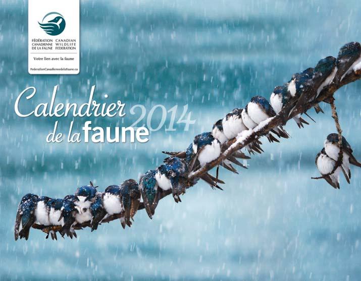 Calendrier Gratuit De La Faune!