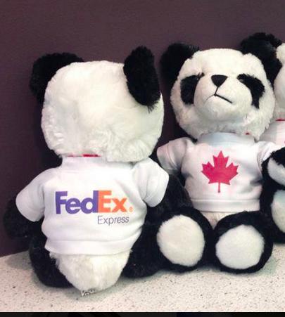 Coupon Rabais De 10$ Par Fedex Express Canada